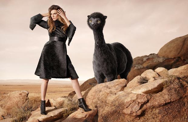 Manteau de fourrure de Buffaloon - © WWF