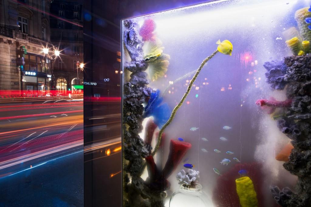 une idée originale pour fait la promotion du programme les rois des aquarium