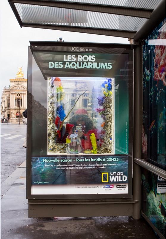 Ubi bene installe de vrais aquarium dans les abribus parisien pour faire la promotion du programme de nat geo wild