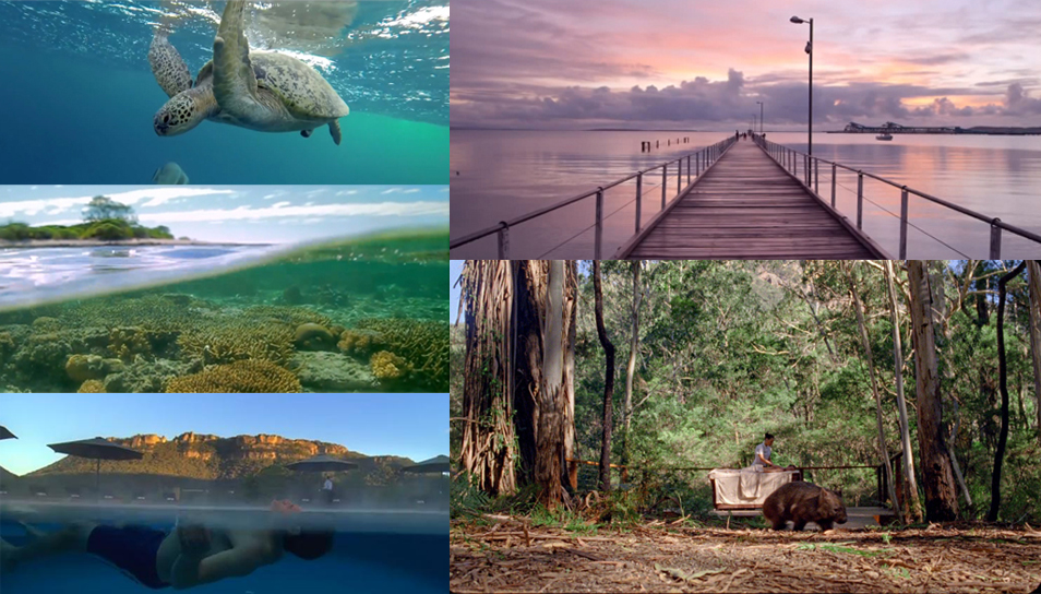 nature, océan, désert ou ville il y en a pour tous les goûts en Australie