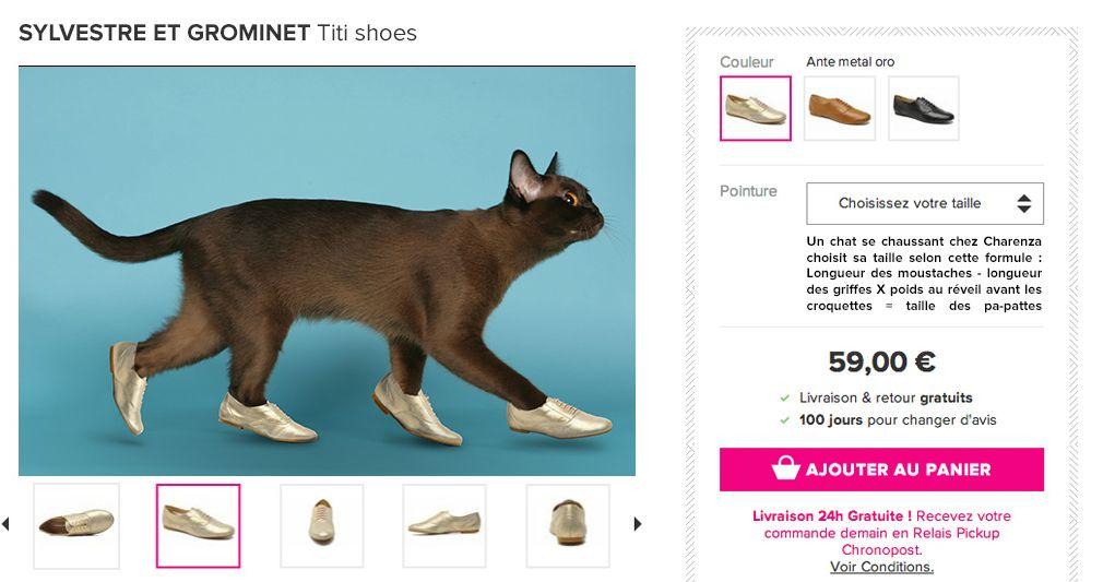 pour 59€ vous pouvez donner un look chaxy à votre minette grâce à Charenza