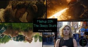The Sleepy Skunk dévoile son mashup cinématographique de l'année 2014