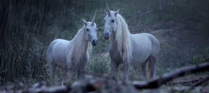 avec ce spot canal + nous explique pourquoi les licornes ont disparu de la terre