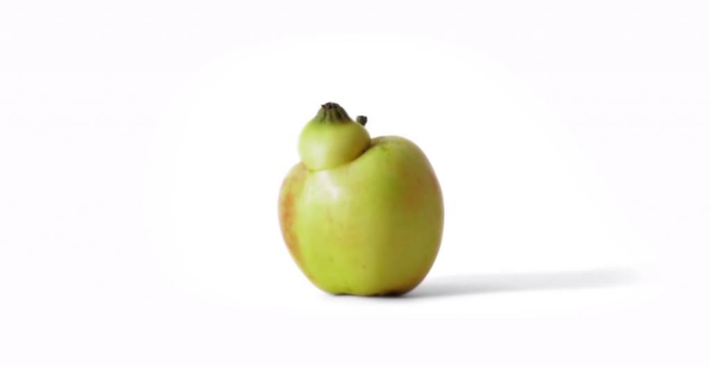 la pomme venue de l'espace