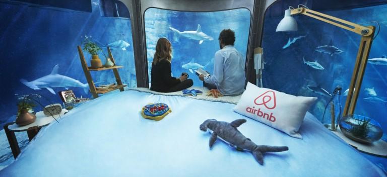 Airbnb vous propose un nuit insolite dans une chambre sur-mesure en plein milieu de l'antre de 35 requins
