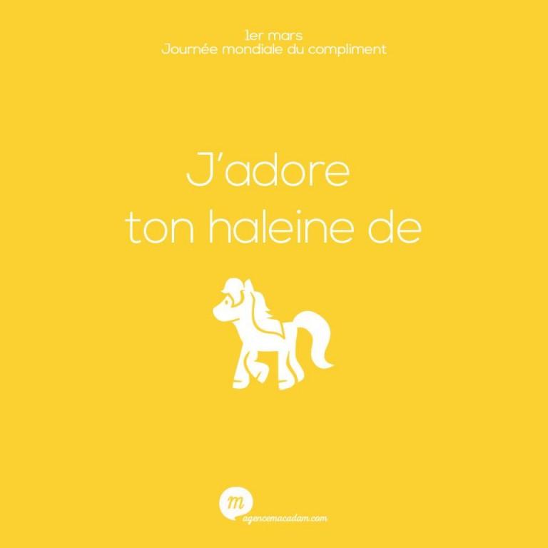 J'adore ton haleine de cheval... Insolent ou insolite, l'agence macadam célèbre la journée des compliments