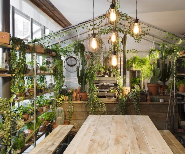 une cuisine remplie de verdure