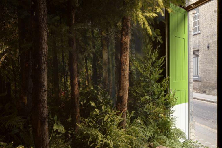 dès l'entrée la maison de pantone pour airbnb nous plonge dans l'ambiance végétale