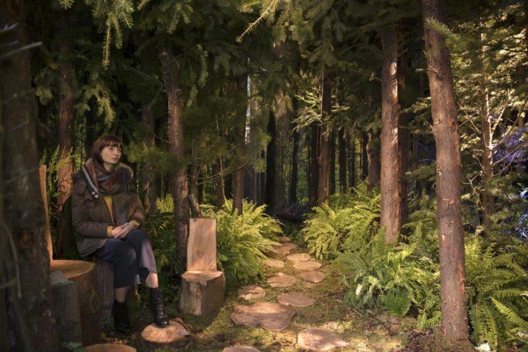 Pantone propose une forêt à l'intérieur avec Airbnb