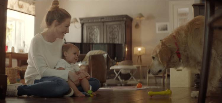 Réalisé parXavier Giannoli et l'agence Altmann + Pacreau, ce film saisissant met l'accent avec justesse et sensibilité sur la fidélité indéfectible d'un chien pour son maître, jusqu'à ce que la mort les sépare
