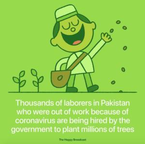 PLANTATION d'arbres au Pakistan