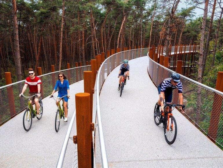 cette piste cyclable circulaire de 700m de long sur 3m de large est suspendue à 10m au-dessus du sol et donne l'opportunité de faire le tour d'une partie de la forêt de Bosland