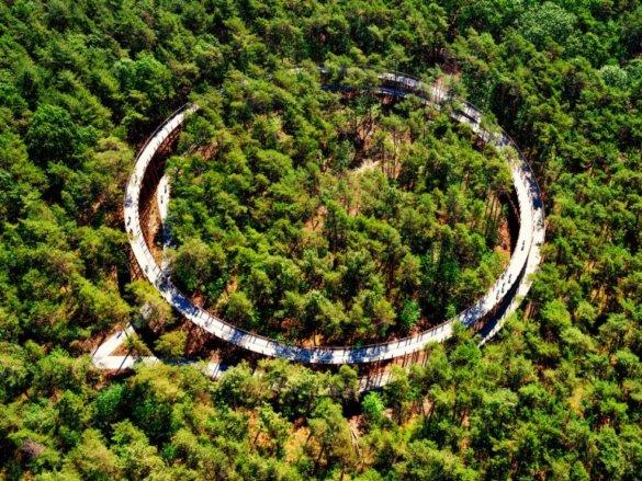 L'office de Tourisme de Limbourg en Belgique a aménagé une piste cyclable circulaire des plus étonnantes puisque celle-ci permet de pédaler au dessus ces arbres !