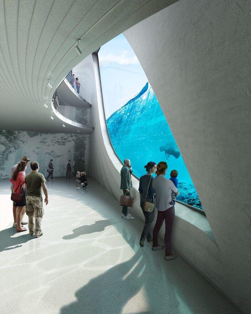 De quoi offrir aux visiteurs une vue imprenable sur les fonds marins et surtout d'observer les poissons et autres cétacés dans leur habitat naturel